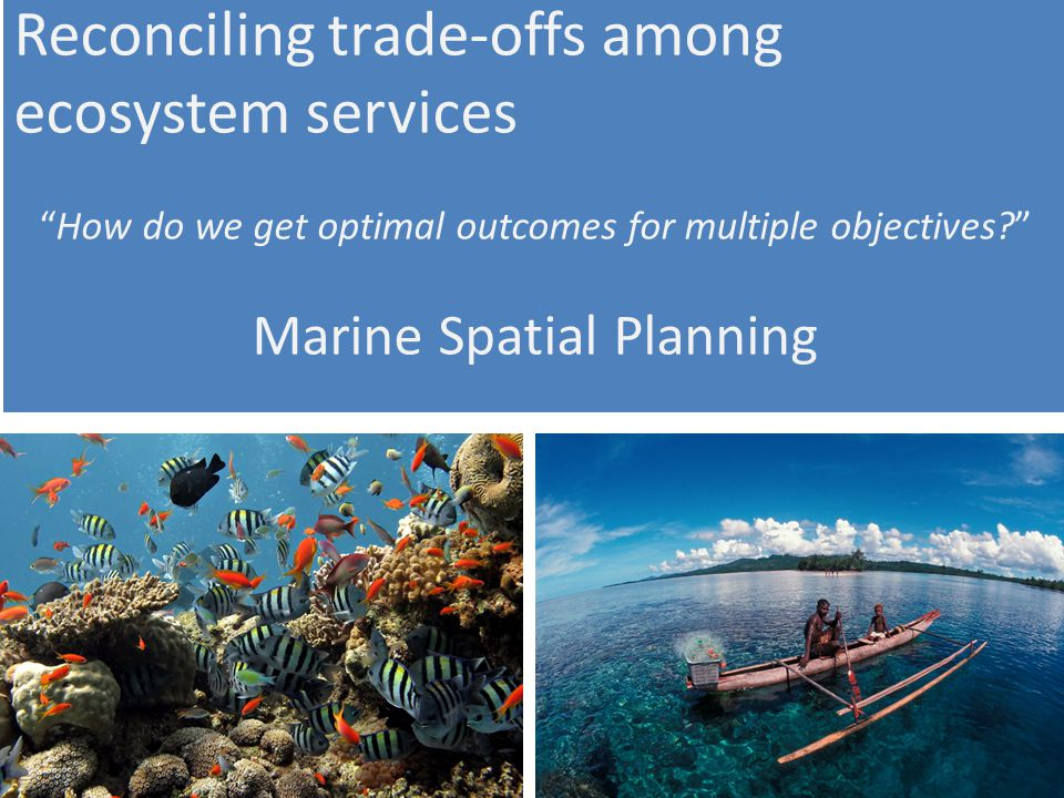 Reconciling trade-offs among ecosystem services