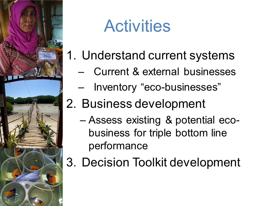 Activities Understand current systems Business development