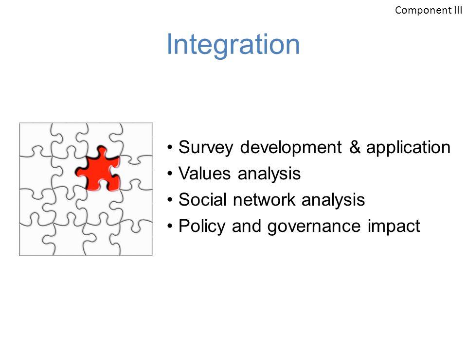 Integration Survey development & application Values analysis