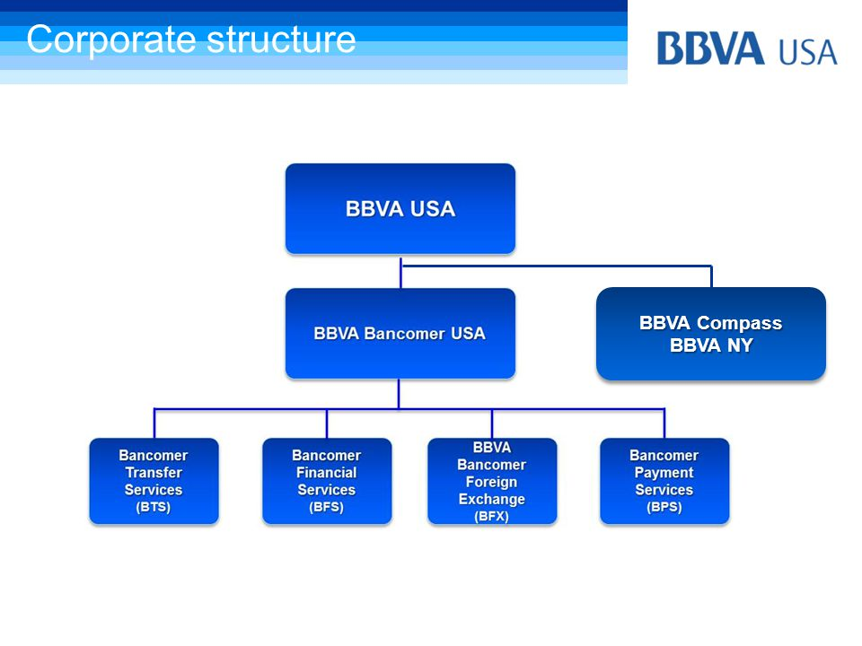 Corporate structure BBVA Compass BBVA NY