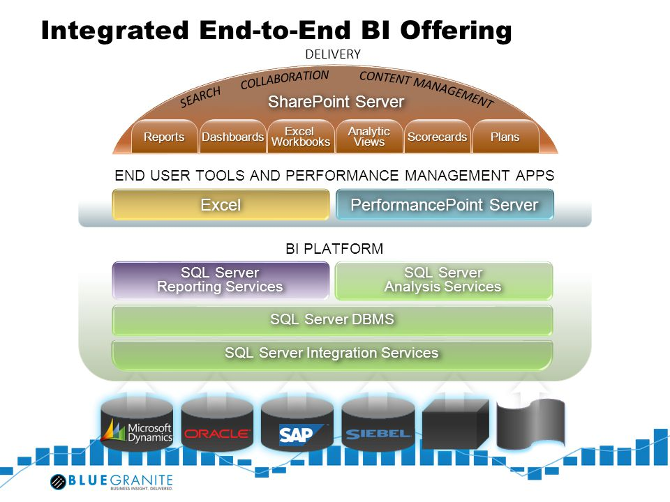 Integrated End-to-End BI Offering