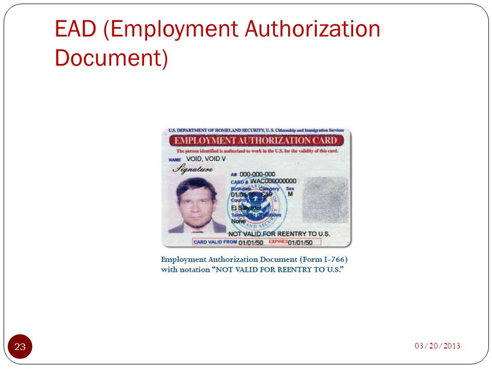 EAD (Employment Authorization Document)