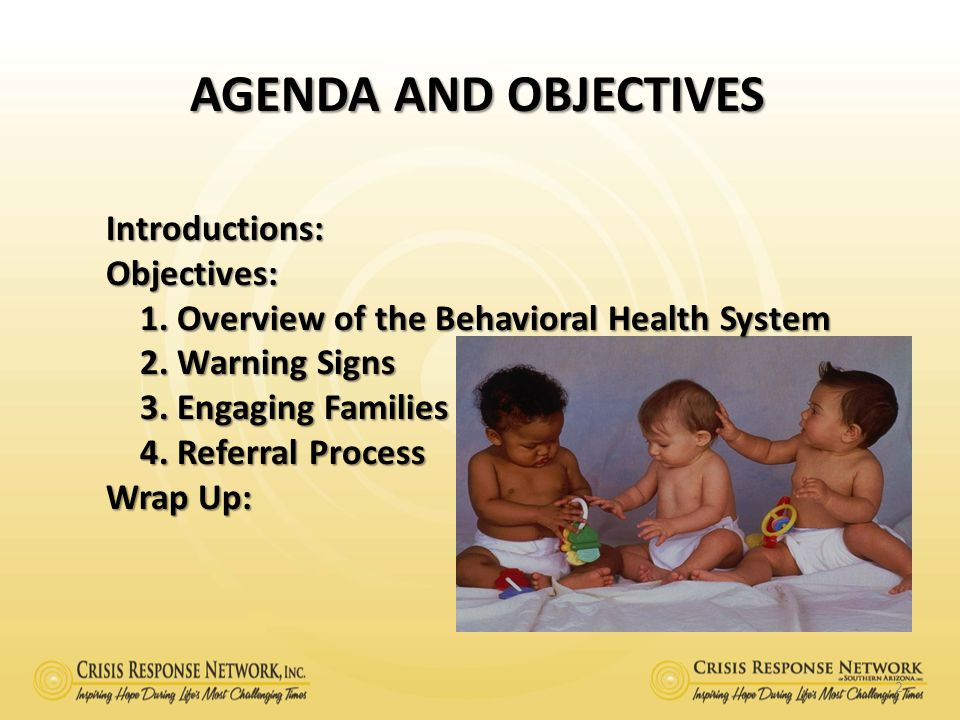 Agenda and Objectives Introductions: Objectives: