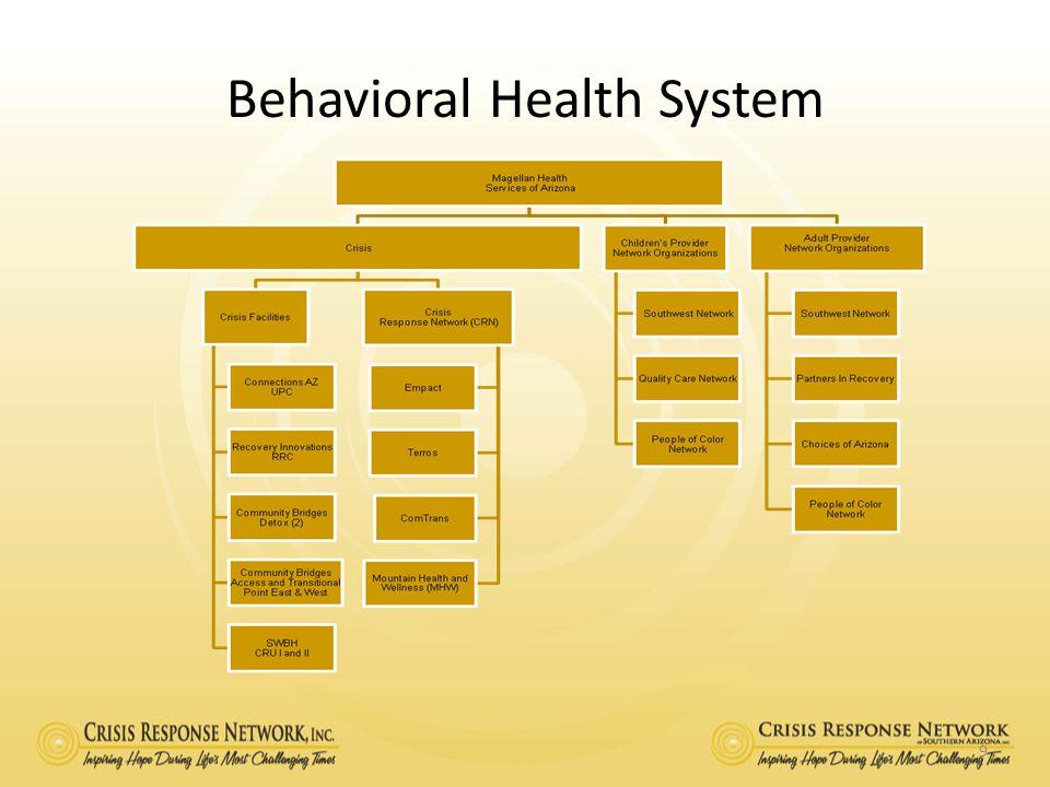 Behavioral Health System