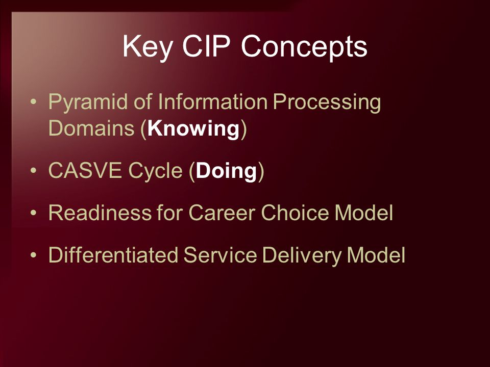 Key CIP Concepts Pyramid of Information Processing Domains (Knowing)