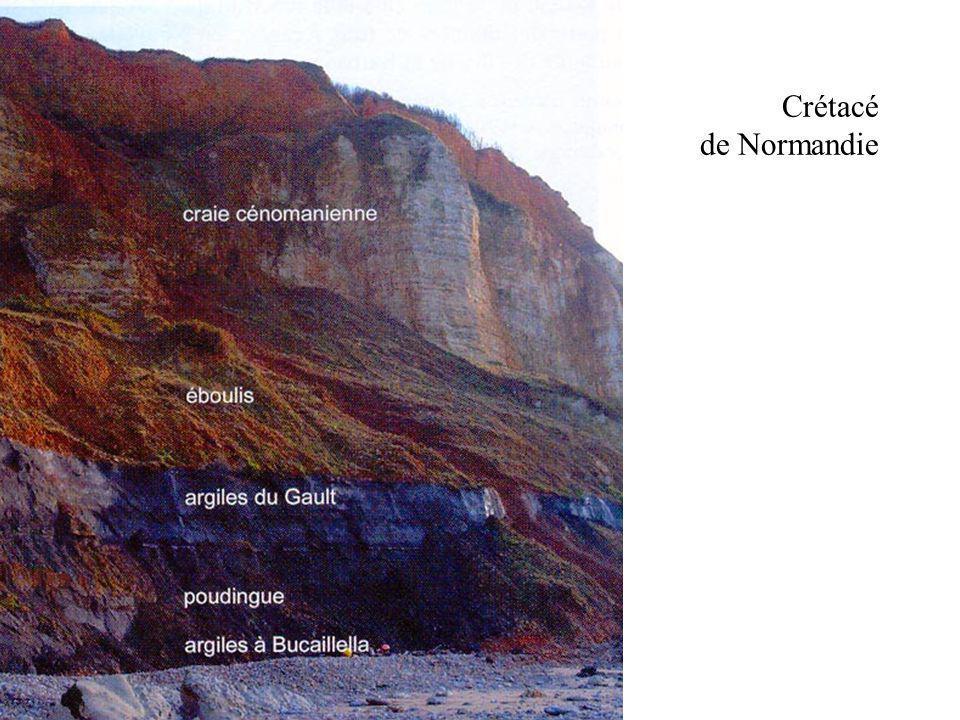 Crétacé de Normandie