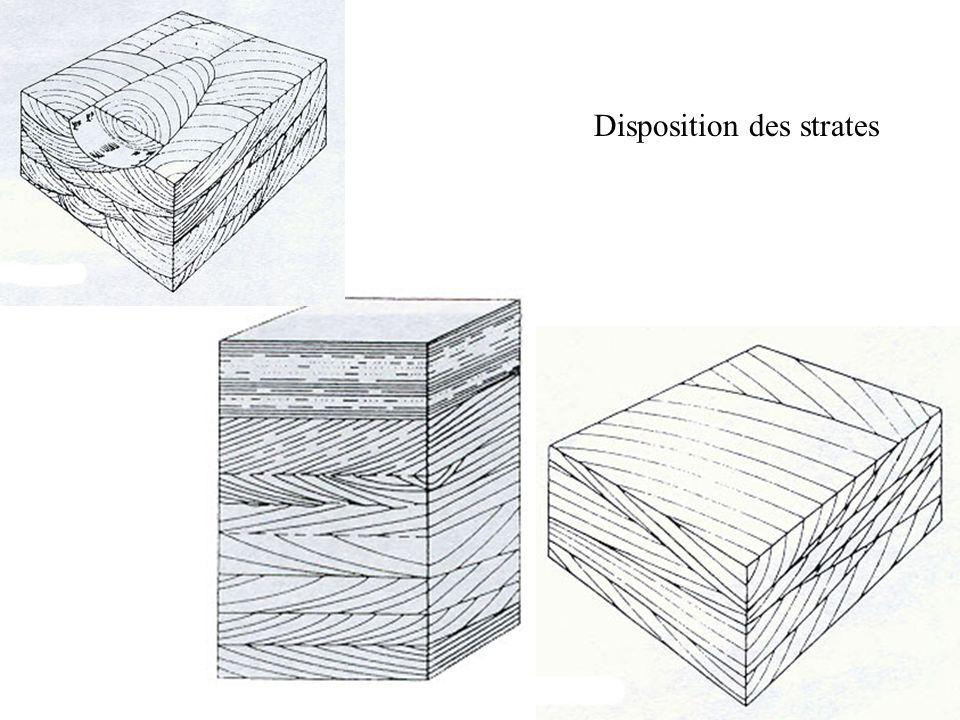 Disposition des strates