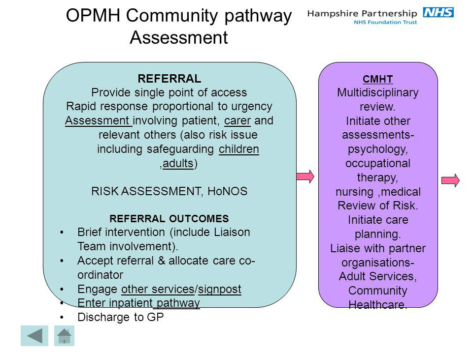 OPMH Community pathway Assessment
