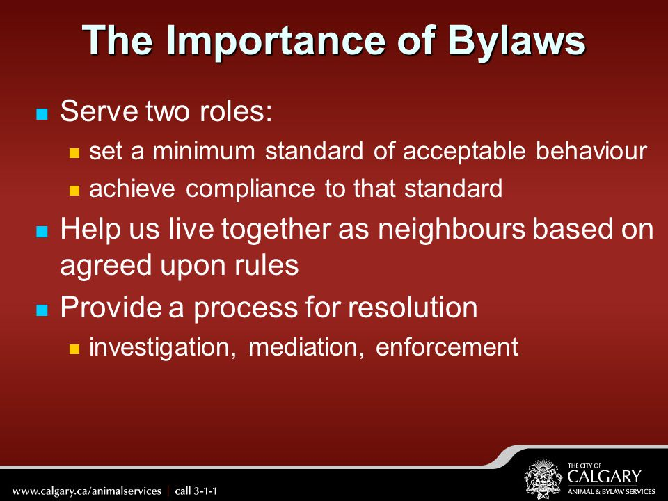 The Importance of Bylaws