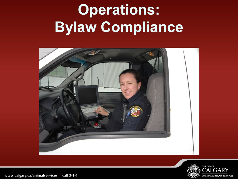 Operations: Bylaw Compliance