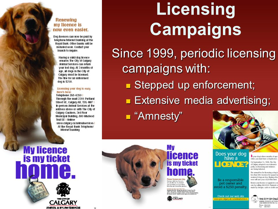 Licensing Campaigns Since 1999, periodic licensing campaigns with: