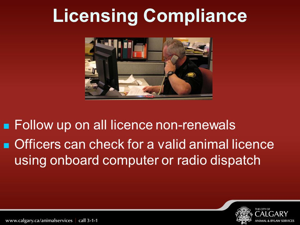 Licensing Compliance Follow up on all licence non-renewals