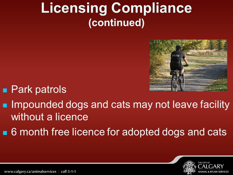 Licensing Compliance (continued)