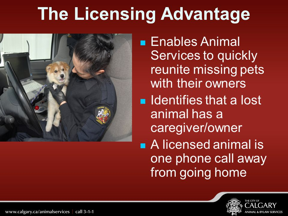 The Licensing Advantage