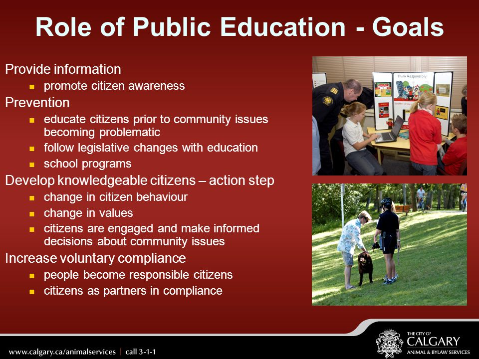 Role of Public Education - Goals