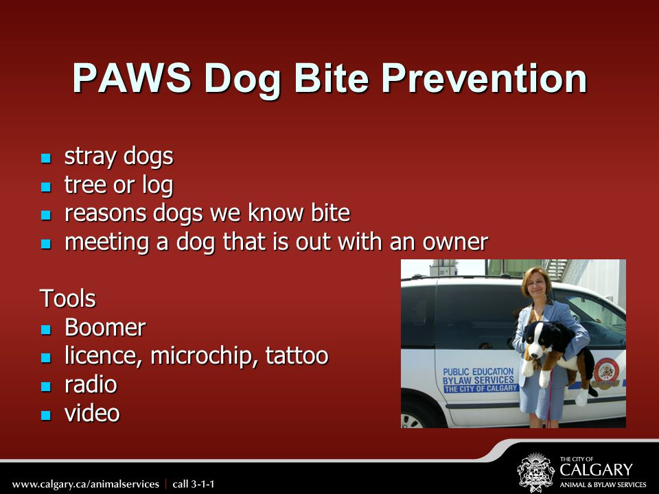 PAWS Dog Bite Prevention