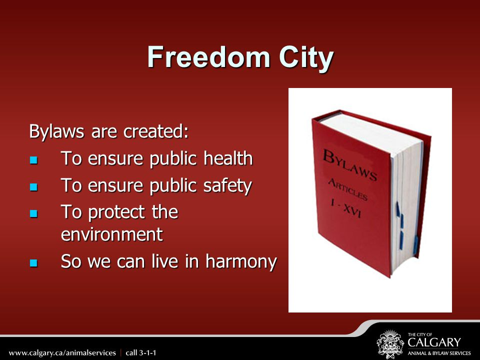 Freedom City Bylaws are created: To ensure public health