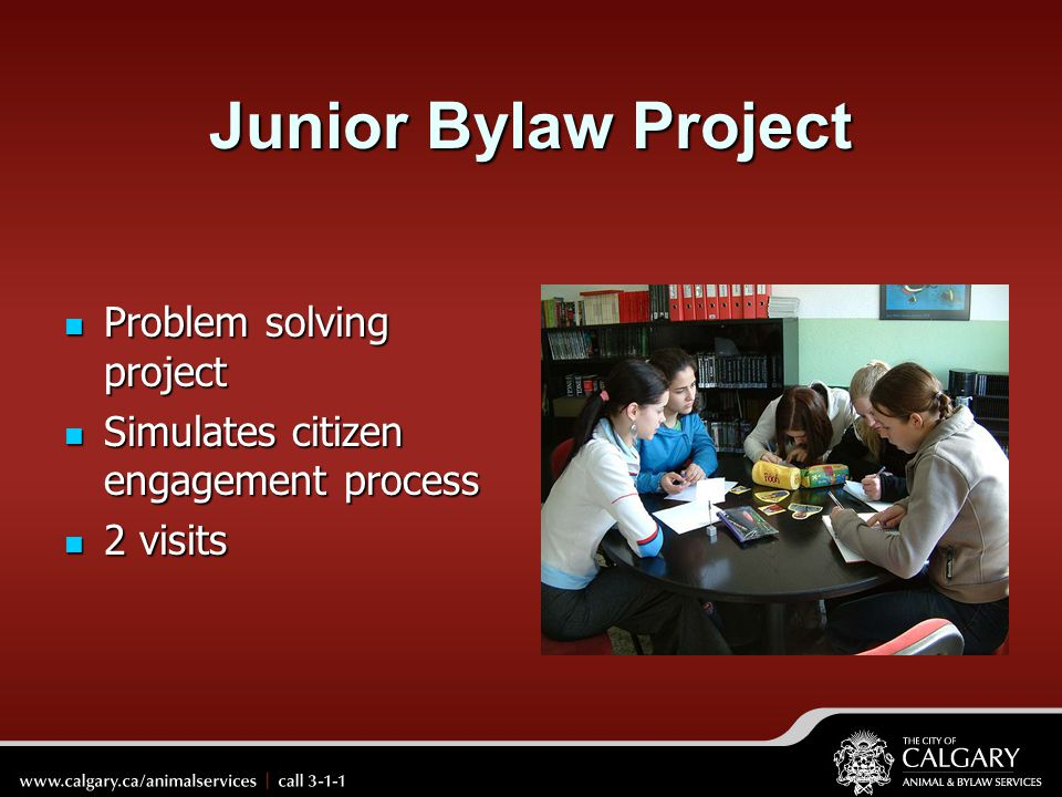 Junior Bylaw Project Problem solving project