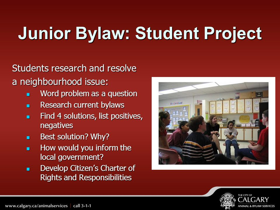 Junior Bylaw: Student Project