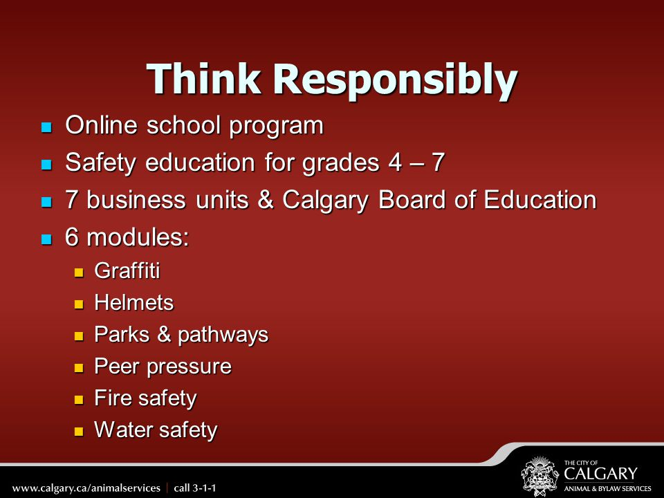 Think Responsibly Online school program