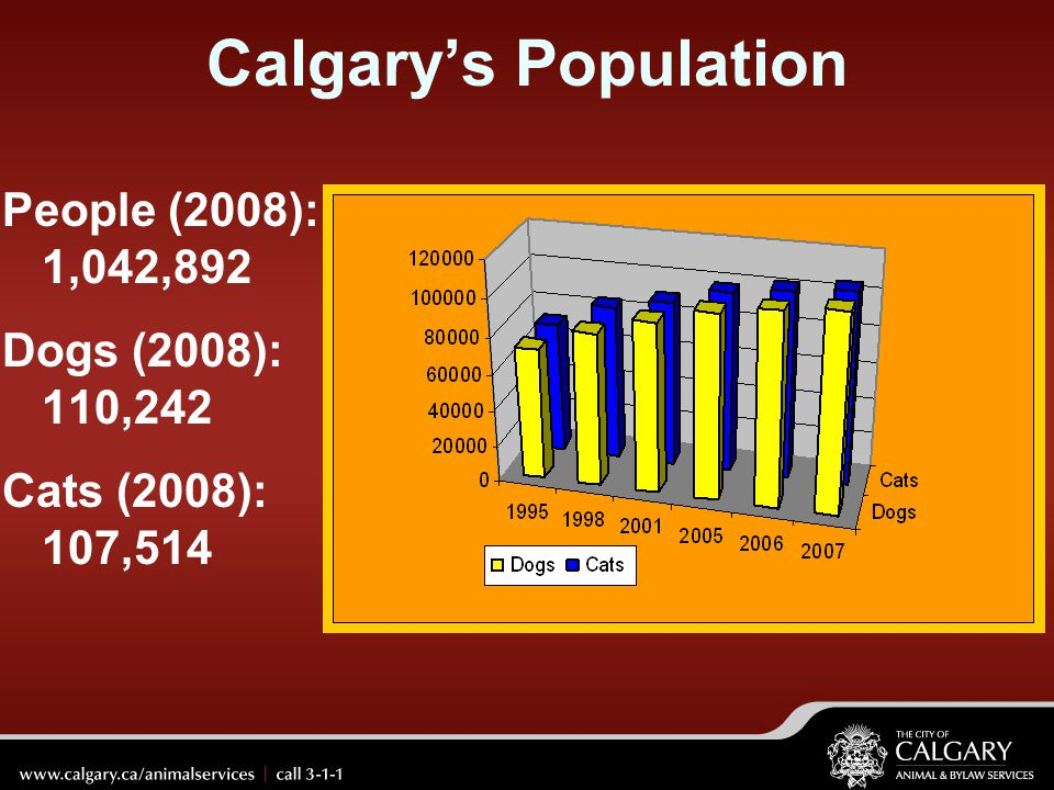 Calgary's Population People (2008): 1,042,892 Dogs (2008): 110,242