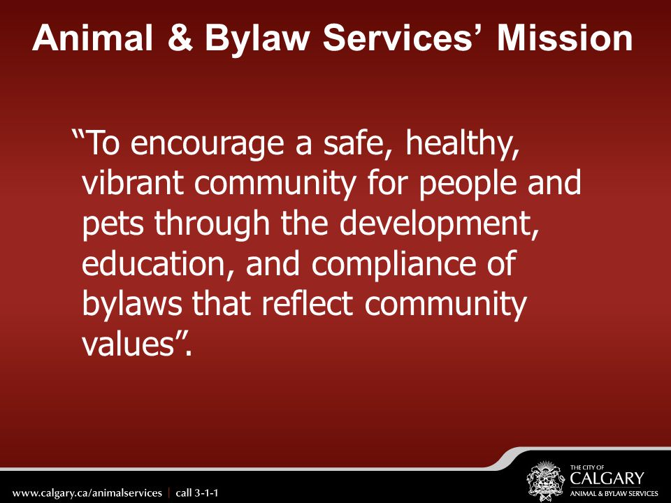Animal & Bylaw Services' Mission