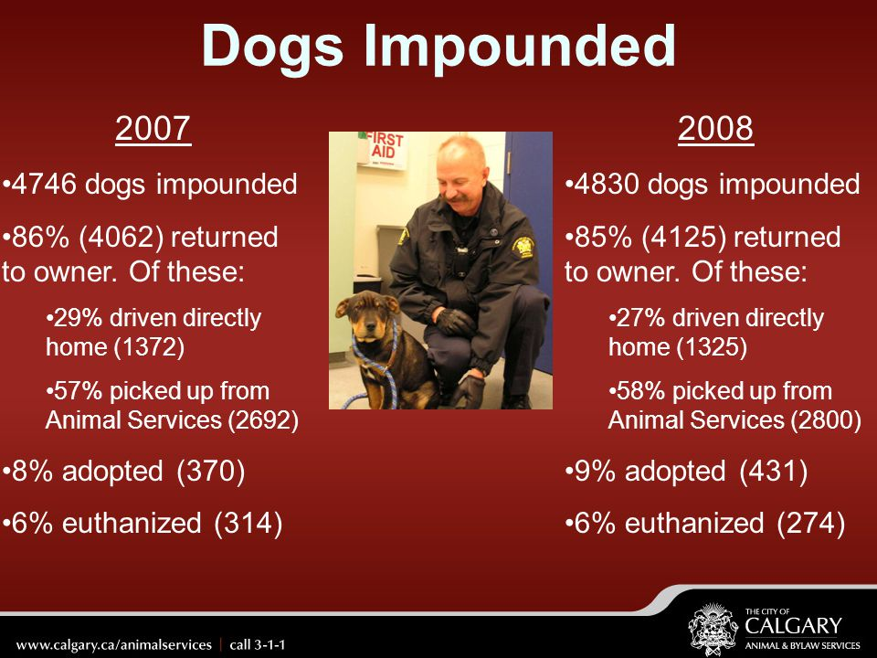 Dogs Impounded 2007 2008 4746 dogs impounded
