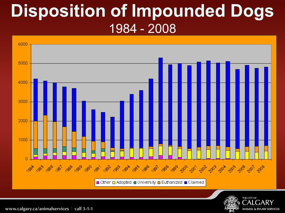 Disposition of Impounded Dogs 1984 - 2008