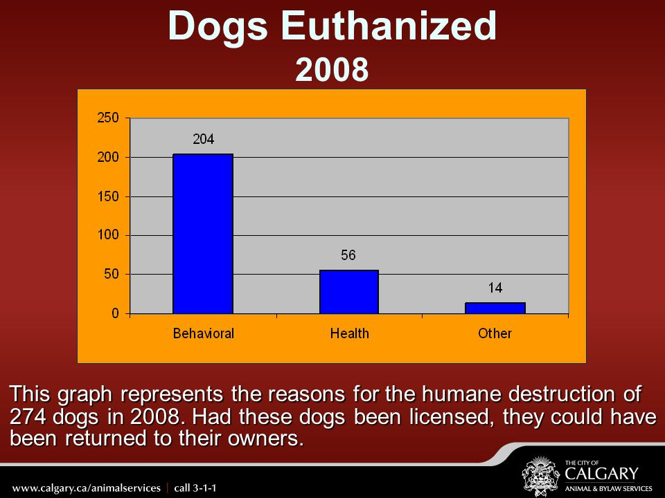 Dogs Euthanized 2008