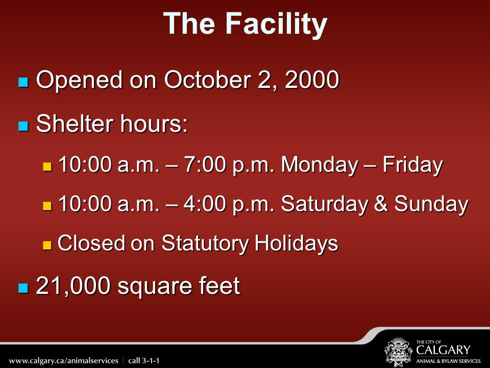 The Facility Opened on October 2, 2000 Shelter hours: