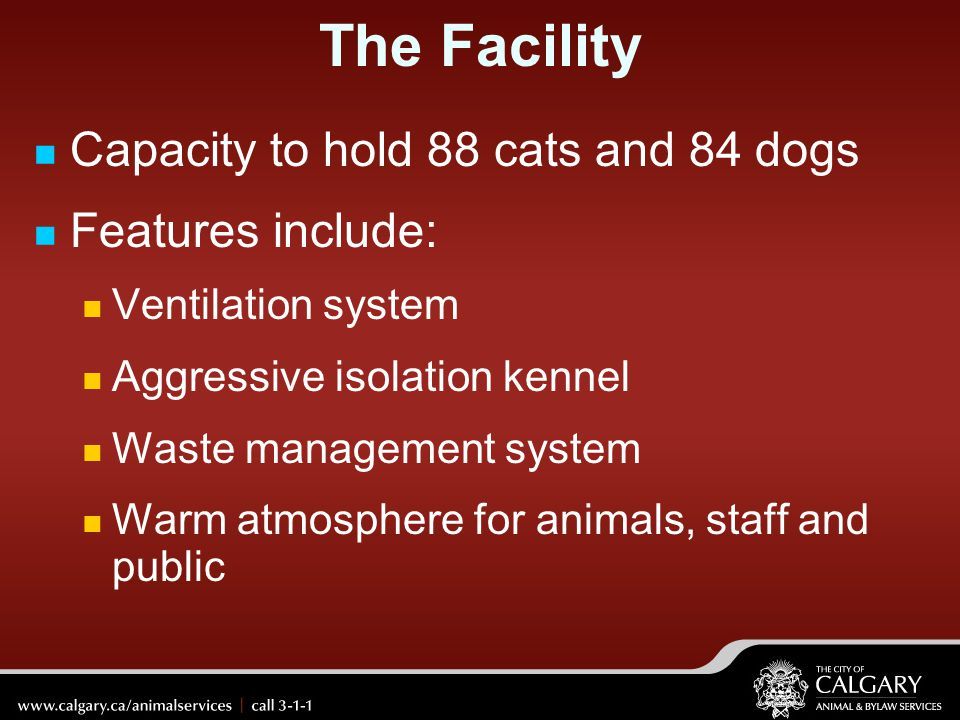 The Facility Capacity to hold 88 cats and 84 dogs Features include:
