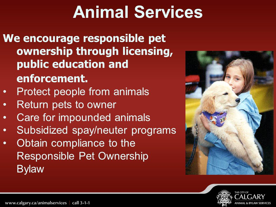 Animal Services We encourage responsible pet ownership through licensing, public education and enforcement.