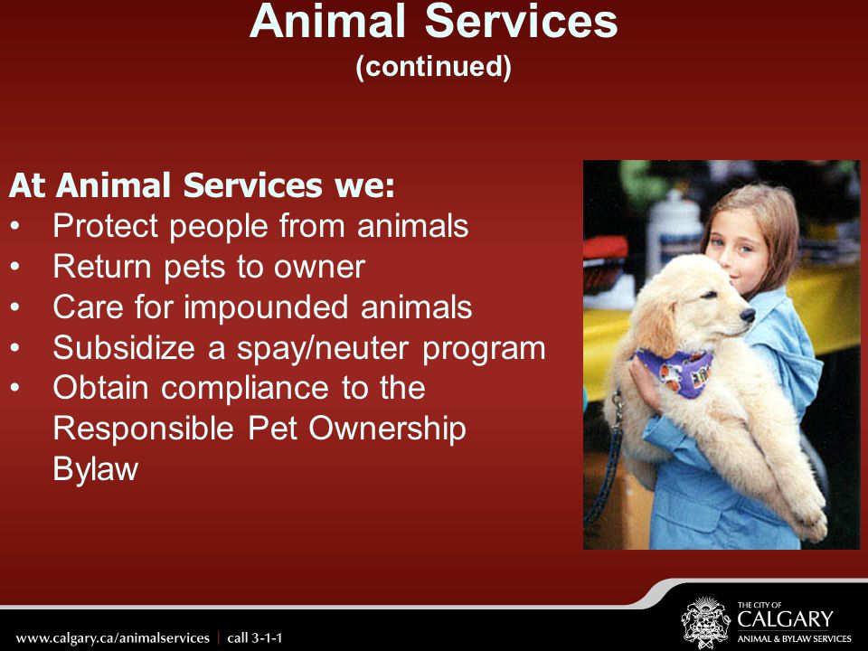 Animal Services (continued)