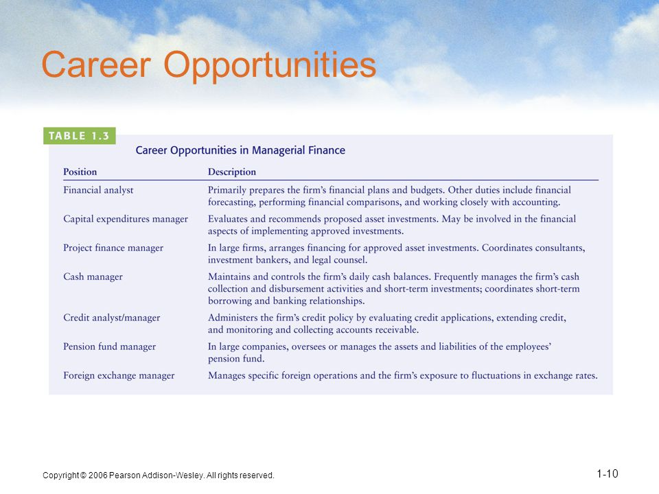 Career Opportunities Copyright © 2006 Pearson Addison-Wesley. All rights reserved.