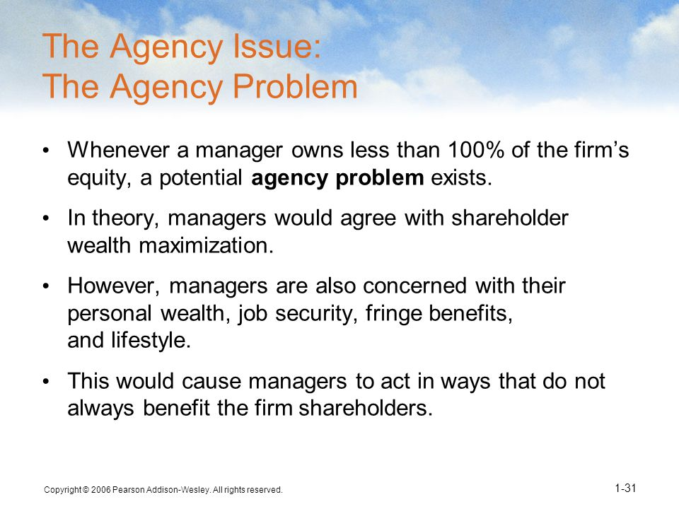 The Agency Issue: The Agency Problem
