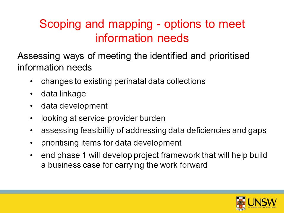 Scoping and mapping - options to meet information needs