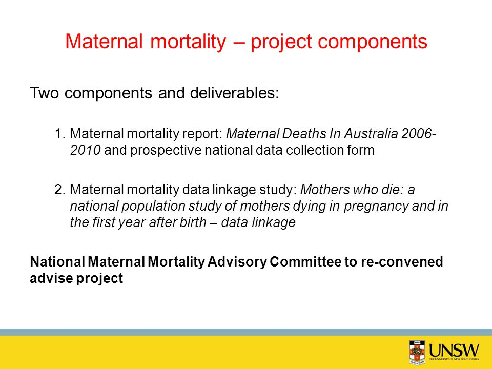 Maternal mortality – project components