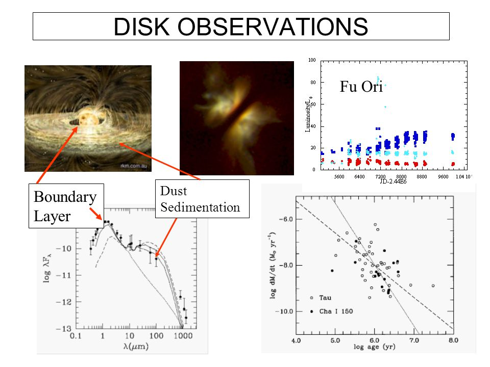 DISK OBSERVATIONS Fu Ori Dust Sedimentation Boundary Layer