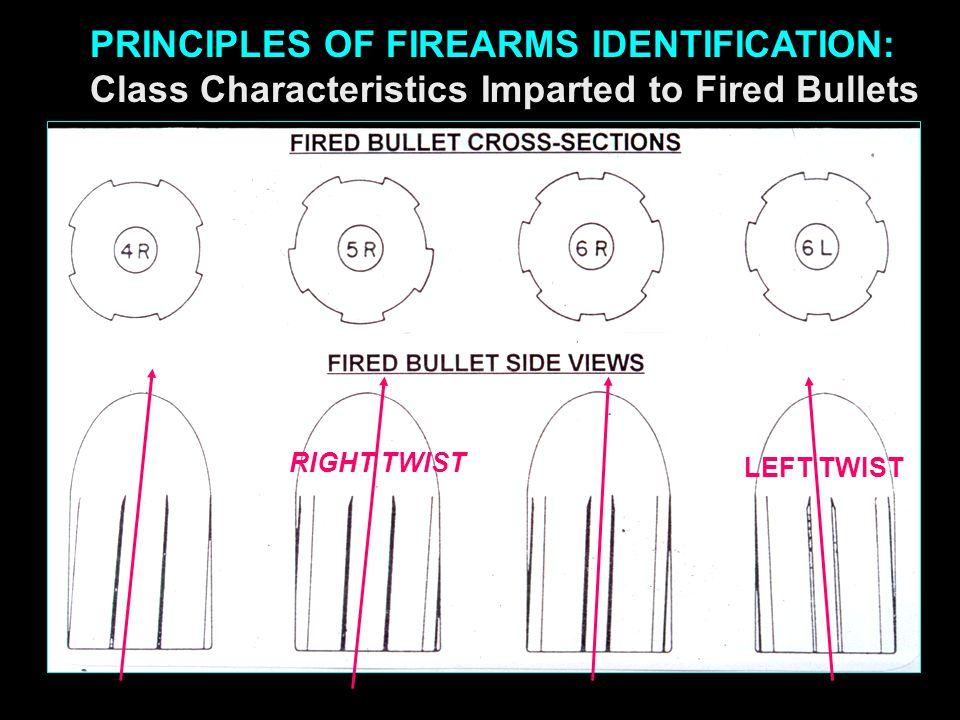 PRINCIPLES OF FIREARMS IDENTIFICATION:
