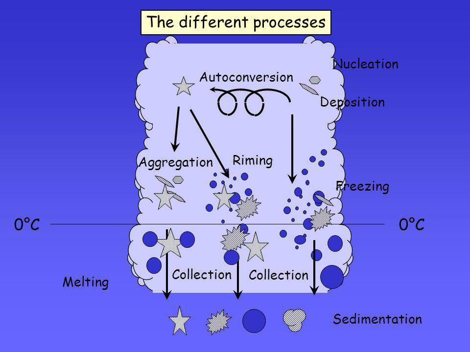 The different processes