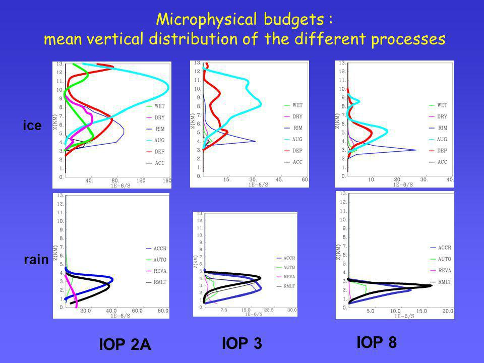 Microphysical budgets : mean vertical distribution of the different processes