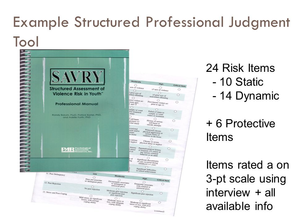 Example Structured Professional Judgment Tool