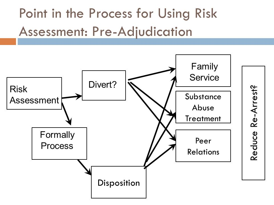 Point in the Process for Using Risk Assessment: Pre-Adjudication