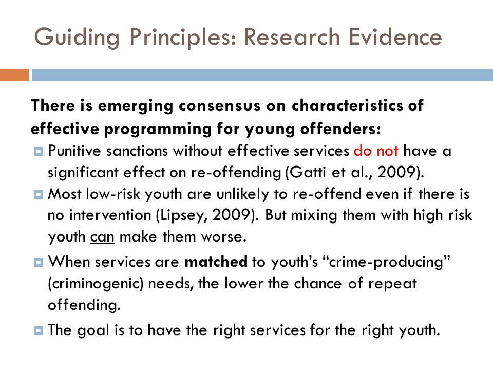 Guiding Principles: Research Evidence