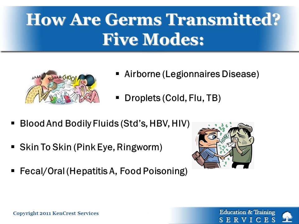 How Are Germs Transmitted Five Modes: