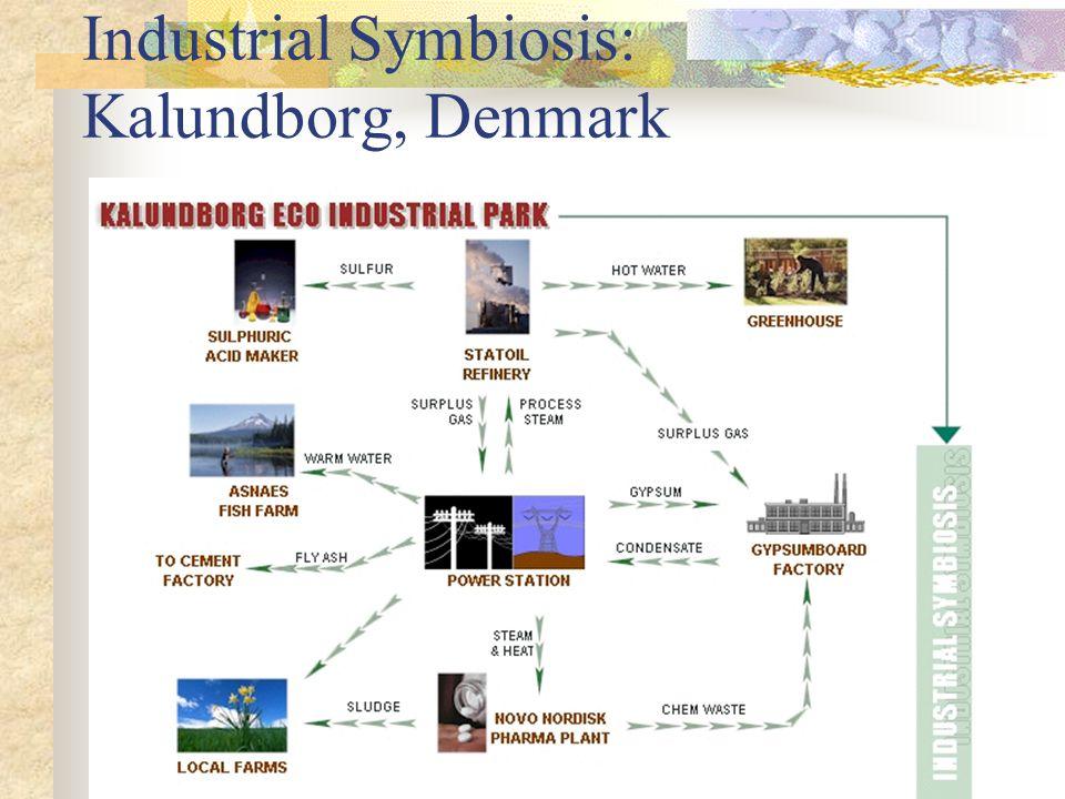 Industrial Symbiosis: Kalundborg, Denmark