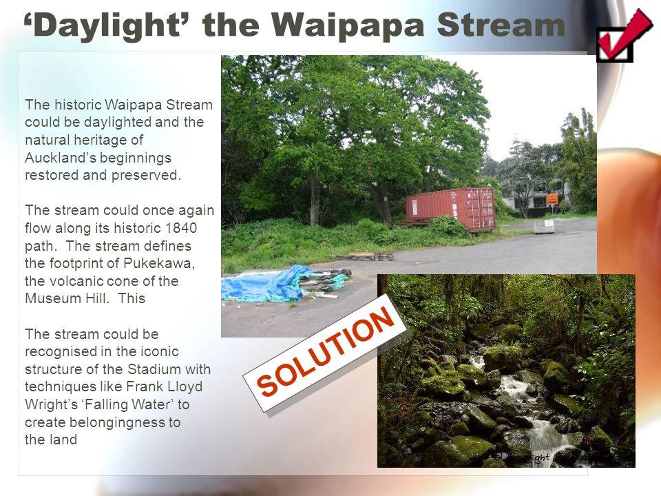 'Daylight' the Waipapa Stream