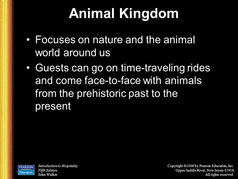 Animal Kingdom Focuses on nature and the animal world around us