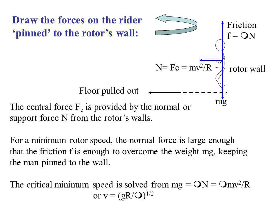Draw the forces on the rider 'pinned' to the rotor's wall: