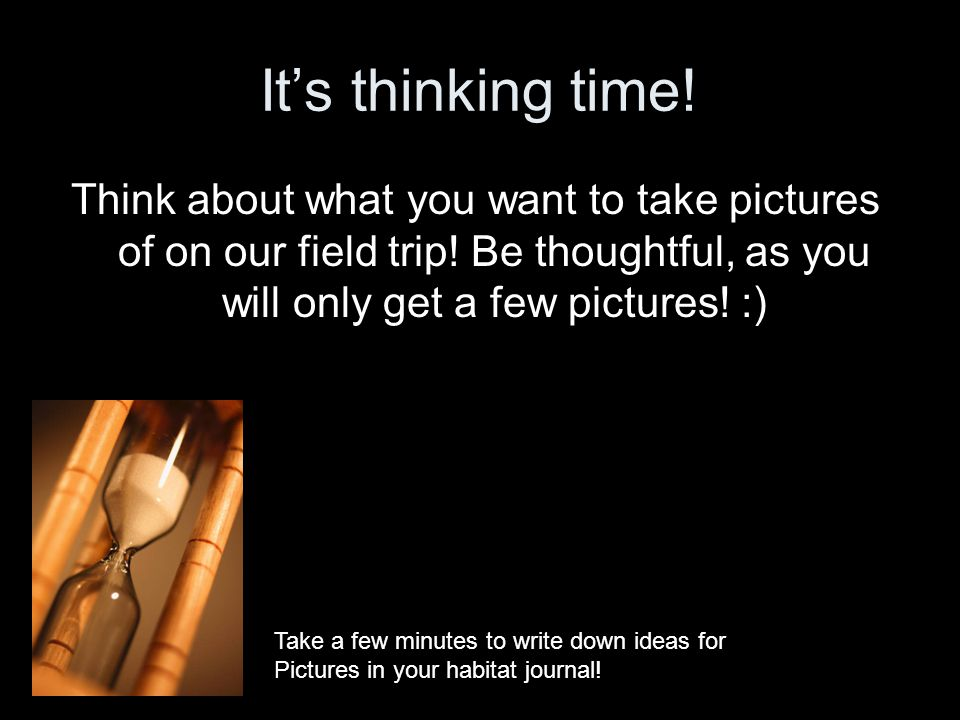 It's thinking time! Think about what you want to take pictures of on our field trip! Be thoughtful, as you will only get a few pictures! :)